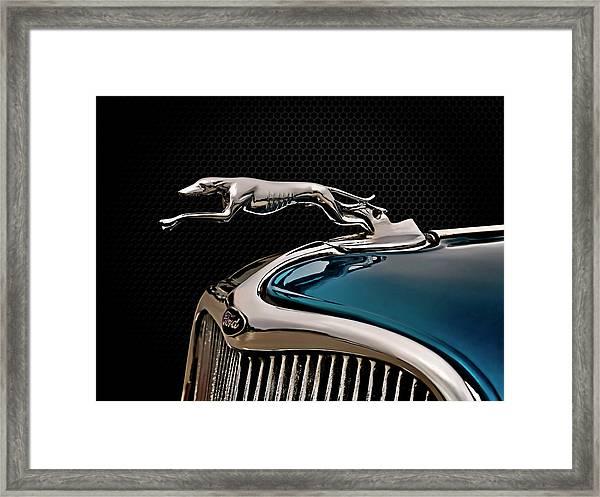 Ford Blue Dog Framed Print