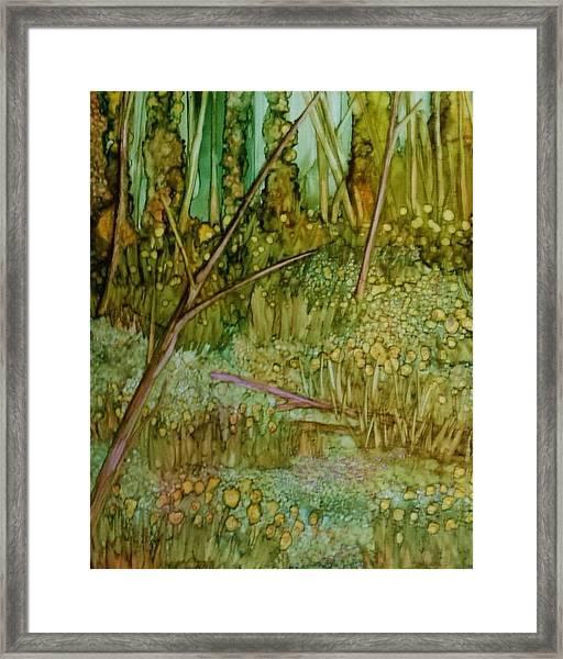 Forest Deep Framed Print