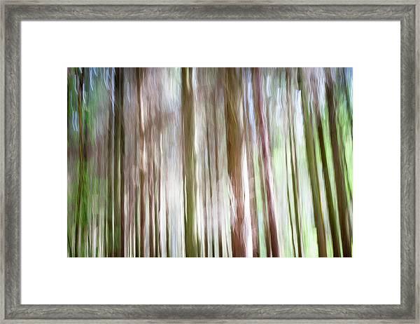 Forest Fantasy 4 Framed Print