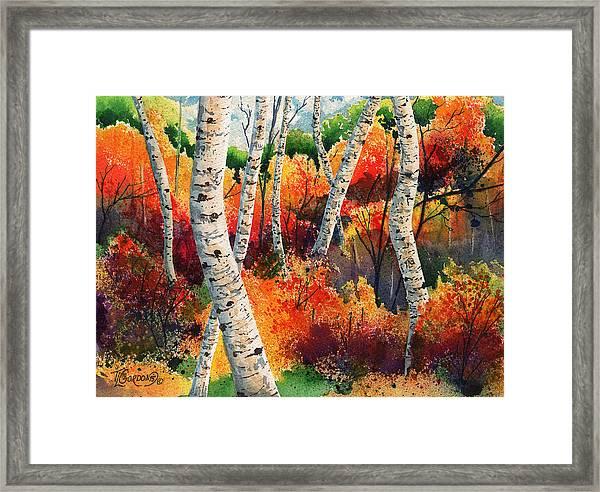 Forest In Color Framed Print