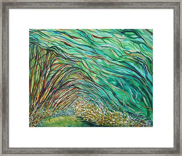 Forest Under The Sea Framed Print