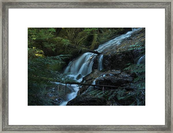 Forest Waterfall. Framed Print