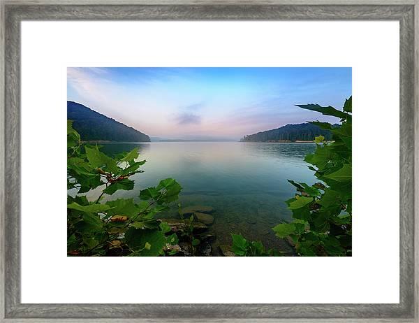 Forever Morning Framed Print