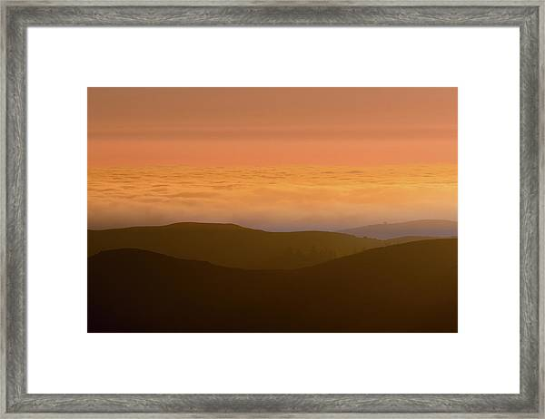 Forever Summer Framed Print