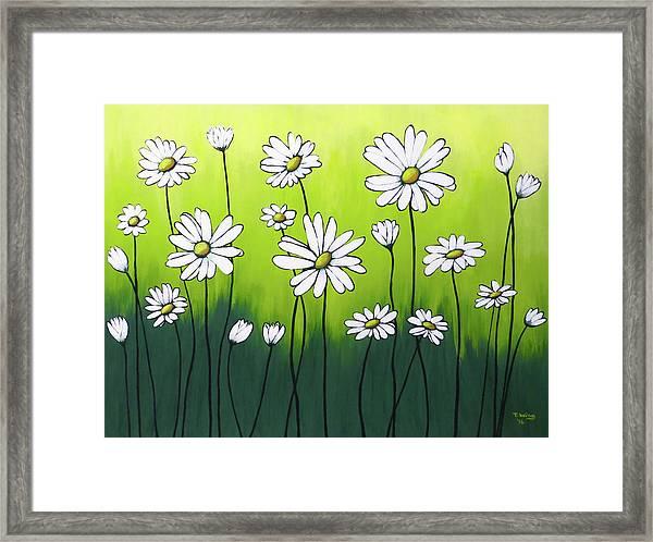 Daisy Crazy Framed Print