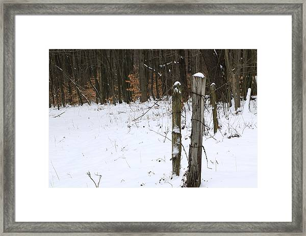 Forgotten Posts Framed Print