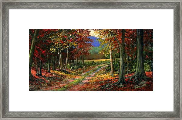 Forgotten Road Framed Print