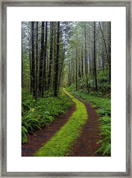 Forgotten Roads Framed Print