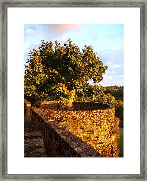 Fortress Tree At Sunset In Le Dorat Framed Print