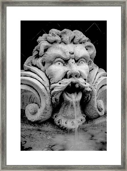 Fountain One  Bw Framed Print