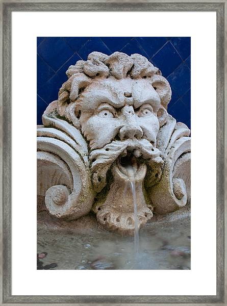 Fountain One Framed Print