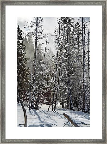 Fountain Paint Pots Shrouded In Snow And Ice Framed Print