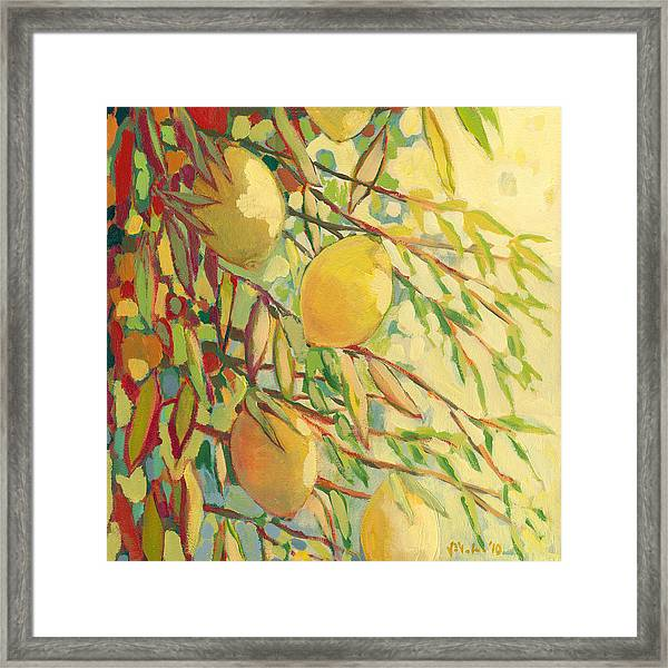 Four Lemons Framed Print