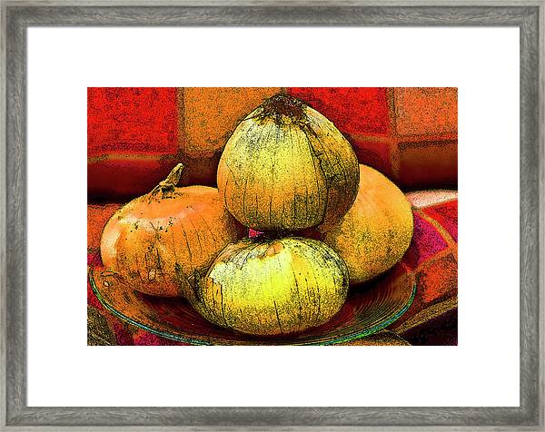 Four Onions  Framed Print