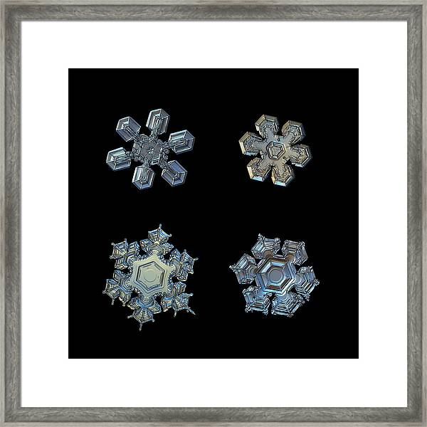 Four Snowflakes On Black 2 Framed Print