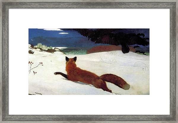 Fox Hunt Framed Print