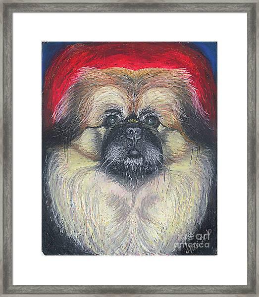 Fozy Bear Pekingese Framed Print