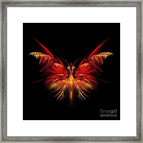 Fractal Butterfly Framed Print