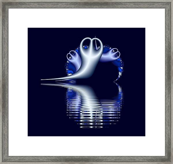 Fractal Peeble Ghosts Framed Print