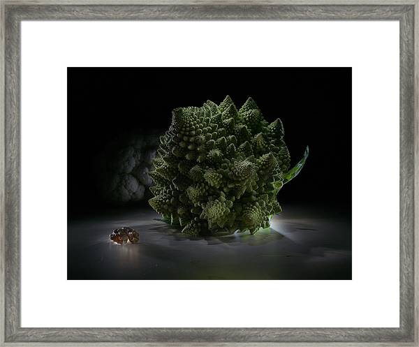 Fractal Supper Framed Print