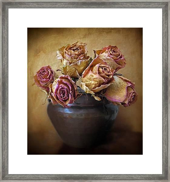Fragile Rose Framed Print