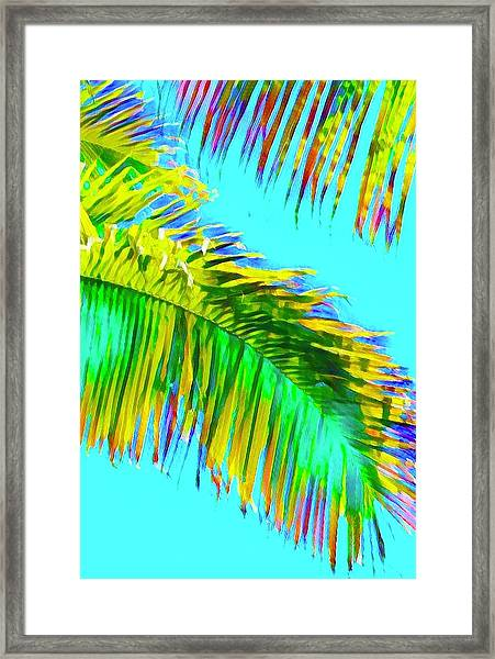 Fragment Of Coconut Palm Psychedelic Framed Print