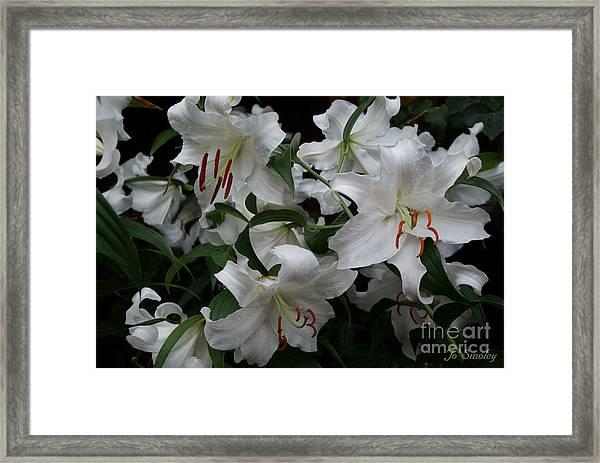 Fragrant Beauties Framed Print
