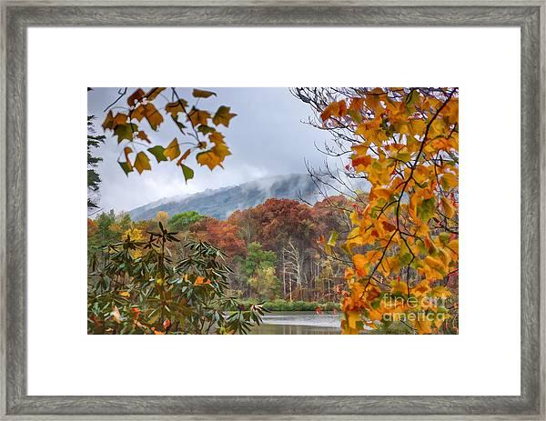Framed By Fall Framed Print