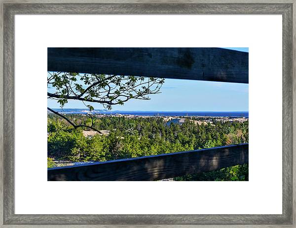 Framed View Framed Print
