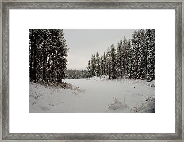 Frater Lake Framed Print