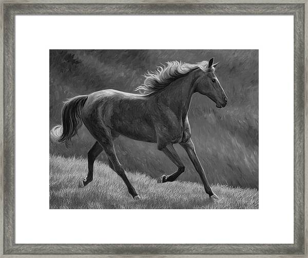Free - Black And White Framed Print