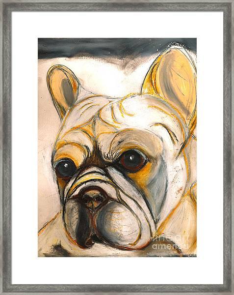 French Bulldog Drawing Framed Print