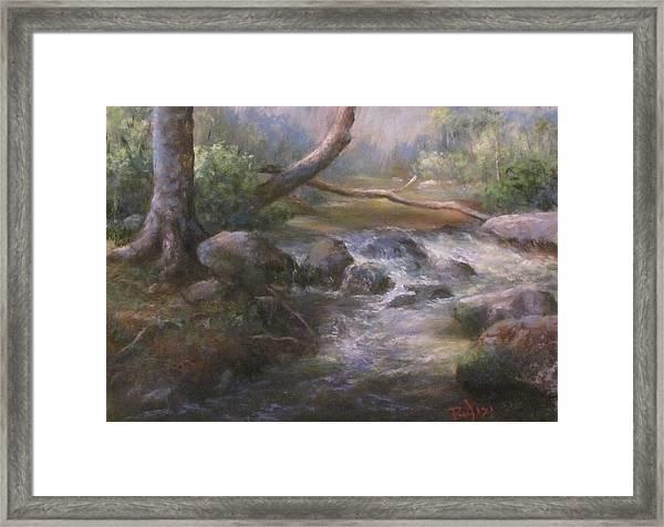 French Creek Framed Print