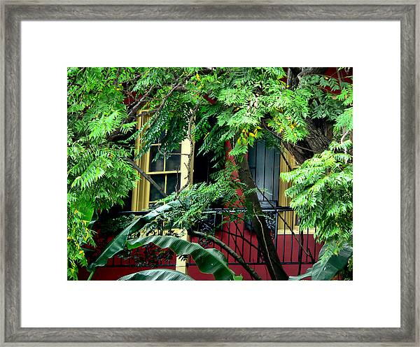 French Quarter Foliage  Framed Print