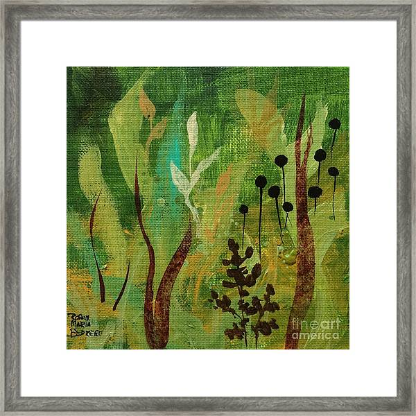 Fresh Air  Framed Print