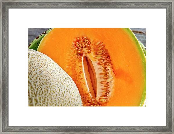 Fresh Cantaloupe Melon Framed Print