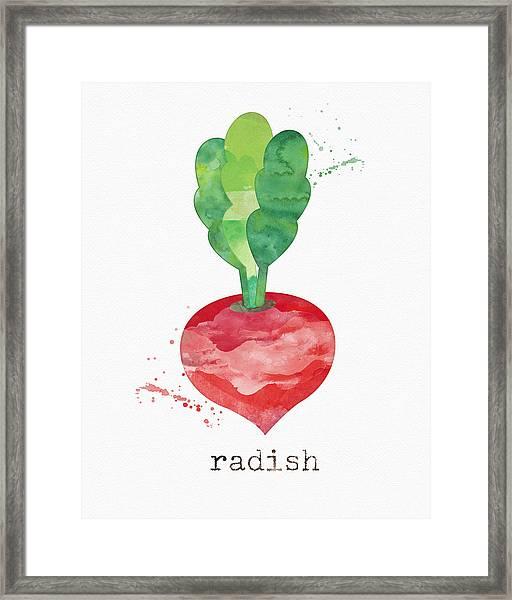 Fresh Radish Framed Print