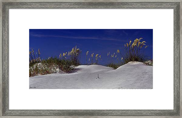 Fripp Island Framed Print