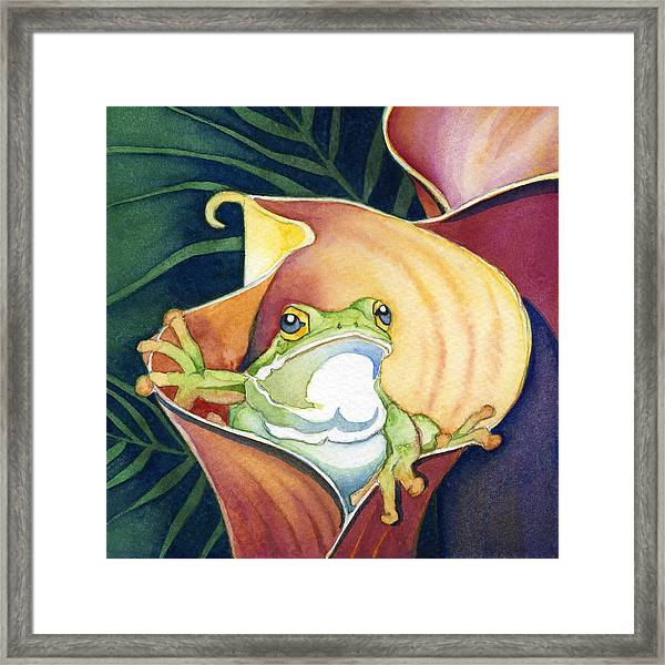 Frog In Gold Calla Lily Framed Print