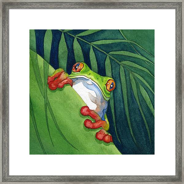 Frog On The Look Out Framed Print