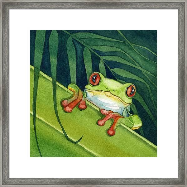 Frog Peek Framed Print