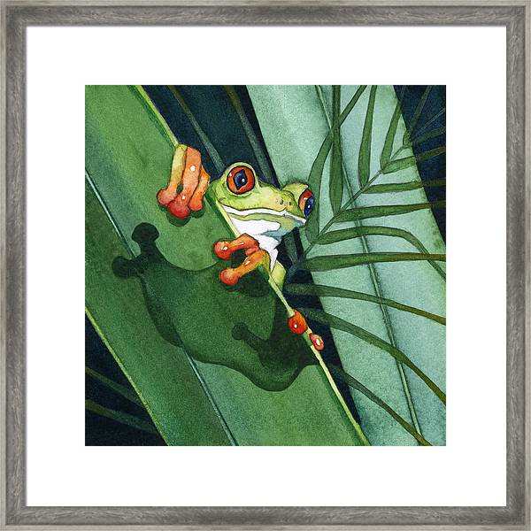 Frog Ready To Leap Framed Print