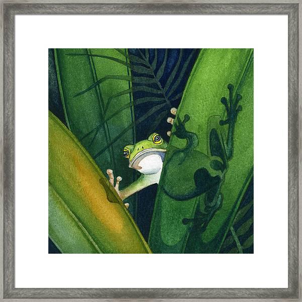 Frog Small Peek Framed Print