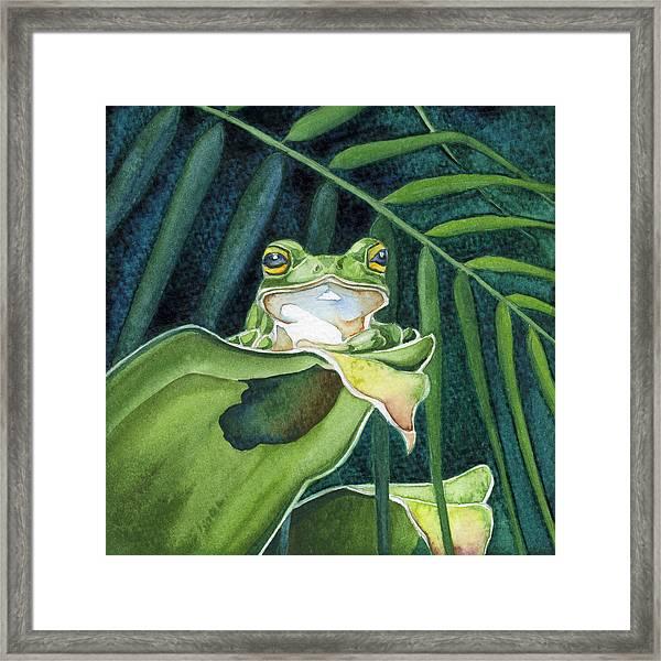 Frog The Pose Framed Print