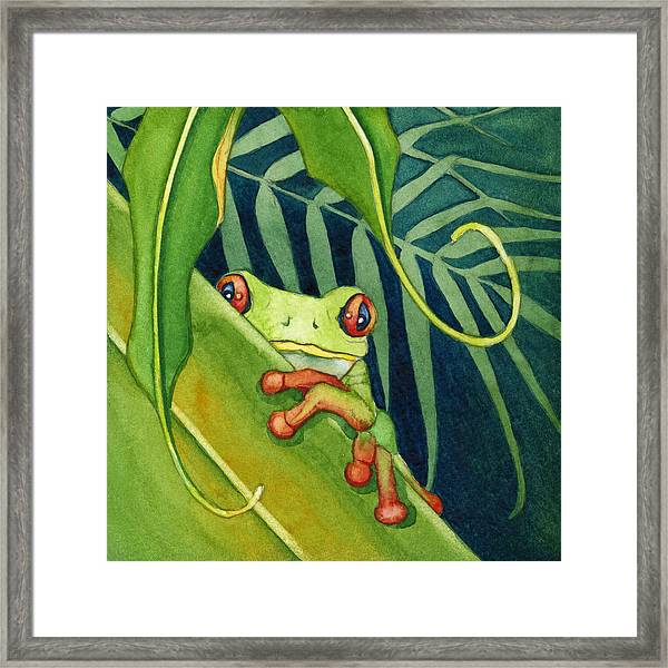 Frog The Timid One Framed Print