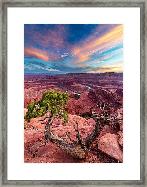 From Nothing Framed Print