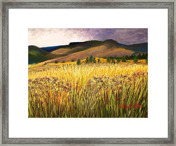 From Storm Into Sunshine Framed Print