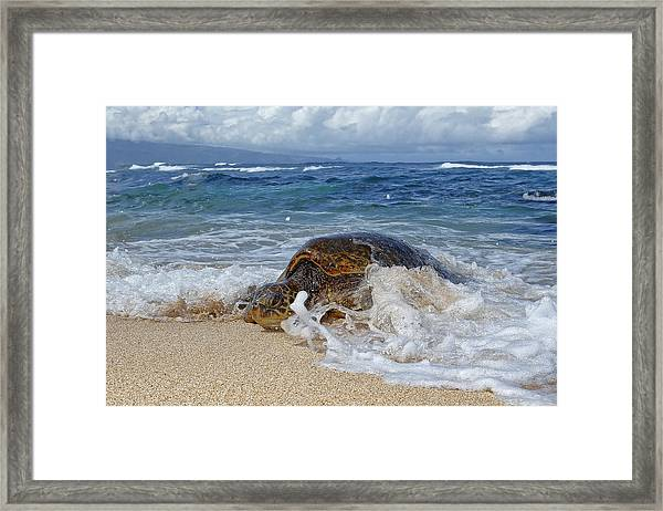From The Sea Framed Print by Peter Stahl