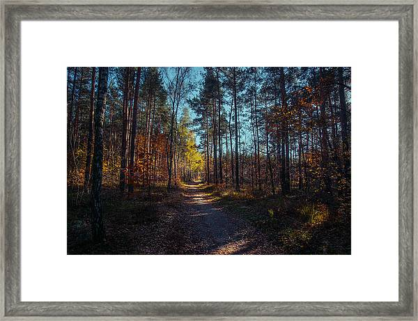 From The Shadow To The Light Framed Print