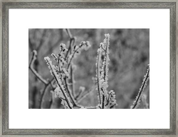 Framed Print featuring the photograph Frost 1 by Antonio Romero